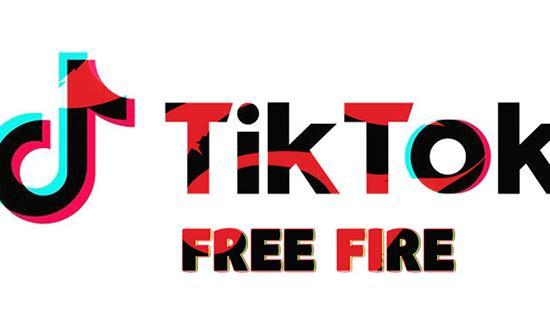 Сервис TikTokFree: заработок и накрутка лайков и подписчиков